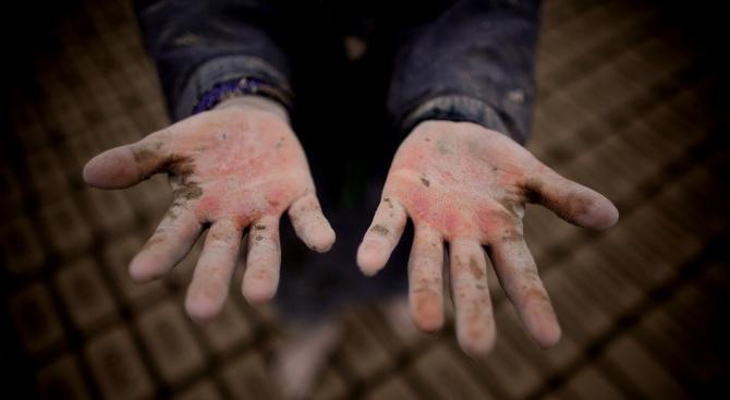 Международната организация на труда настоява децата да не работят на полето, а за мечтите си